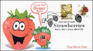17-092, 2017, SC 5201, Strawberries, FDC, with a randomlyselected Botanical Art