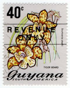 (I.B) British Guiana (Guyana) Revenue : Duty Stamp 40c