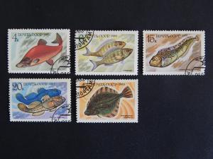 Fish, series, SU, 1983, №90(IR)