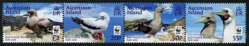 HERRICKSTAMP NEW ISSUES ASCENSION W.W.F. Red-Footed Booby Bird