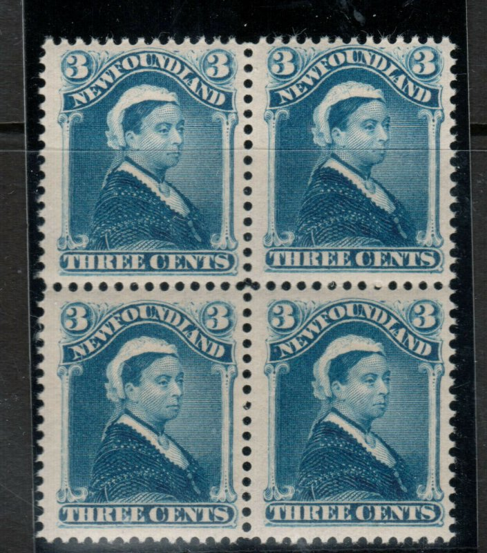 Newfoundland #49 Very Fine Never Hinged Block **With Certificate**