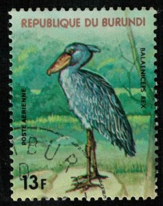 Bird (T-5072)