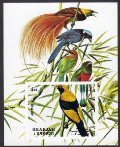Sharjah MNH S/S Birds Fauna 1972