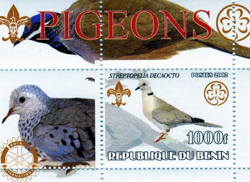 Benin 2002 Pigeon s/s Perforated mnh.vf