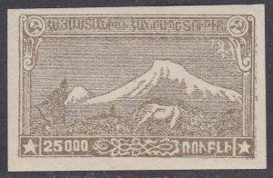 Armenia Sc #294 MH Imperforate