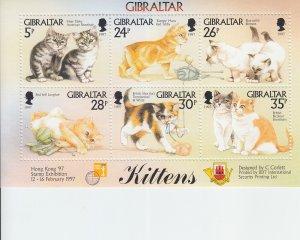 1997 Gibraltar Kittens MS6 (Scott 726) MNH