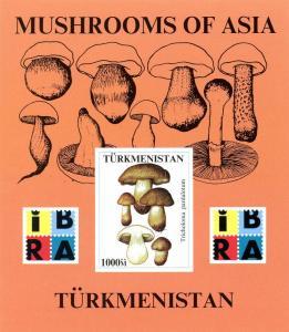 TURKMENISTAN SHEET IMPERF MUSHROOMS