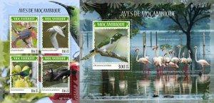 Z08 IMPERF MOZ190430ab MOZAMBIQUE 2019 Birds of Mozambique MNH ** Postfrisch