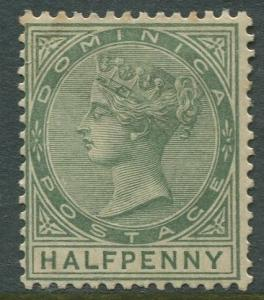 Dominica -Scott 17 - QV Definitive Issue -1883 - MLH - Single 1/2p Stamp