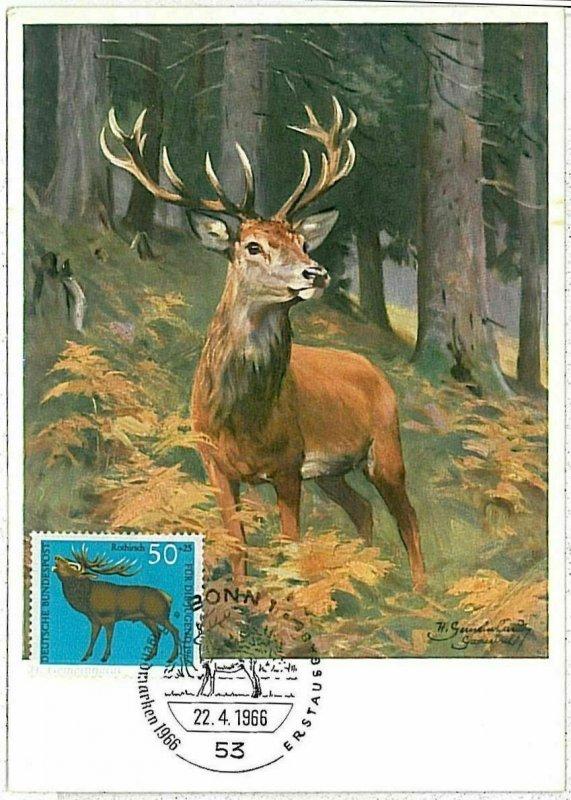 32188 - GERMANY - POSTAL HISTORY -- MAXIMUM CARD Deer HUNTING Animals, 1966