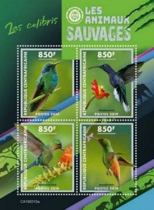 Central Africa - 2019 Wild Animals Hummingbirds - 4 Stamp Sheet - CA190310a