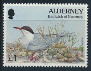 GB Alderney  SG A76 MNH   £1 Common Tern Birds 1994 SC# 86 See scan