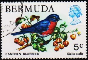 Bermuda. 1978 5c S.G.389 Fine Used