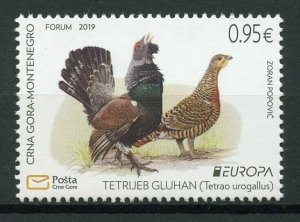 Montenegro 2019 MNH National Birds Europa Capercaillie 1v Set Stamps