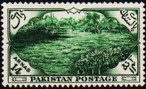 Pakistan. 1954 14a S.G.69 Unmounted Mint