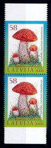 [68922] Latvia 2008 Mushrooms Pilze Champignons Pair from Booklet MNH