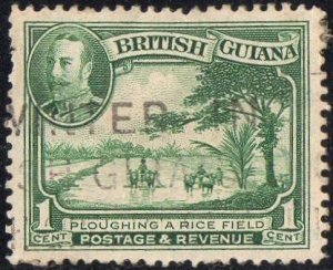 British Guiana 1934 1c Ploughing rice field used