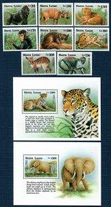 Sierra Leone 1647-56 MNH Singles and S/S Ape/Monkey/Leopard/Elephant(SCV $26.45)
