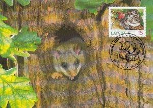 Latvia 1994 Maxicard Sc #384 15s Edible dormouse WWF