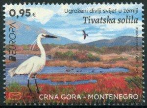 Montenegro 2021 MNH Europa Stamps Endangered Natl Wildlife Saline Birds 1v Set