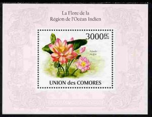 Comoro Islands 2010 Flowers from the Indian Ocean Region ...