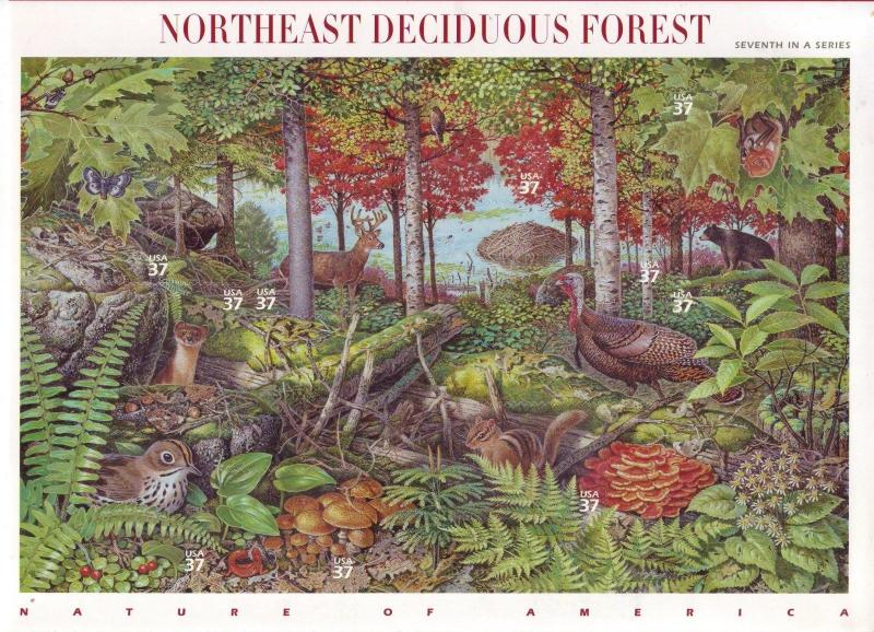 {BJ stamps} #3899, 37¢ N.E. Deciduous Forest sheet of 10, issued 2005