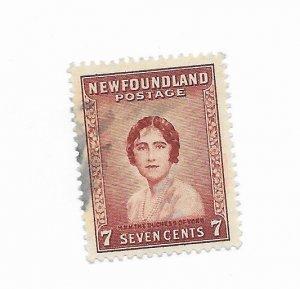 Newfoundland #208 Used - Stamp - CAT VALUE $1.25