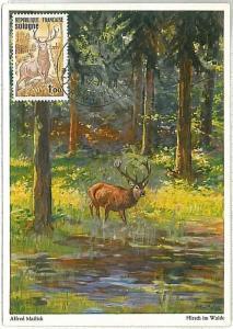 MAXIMUM CARD - POSTAL HISTORY - France: Dears, Mountains, 1972