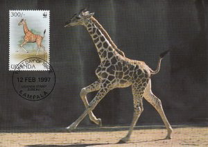Uganda 1997 Maxicard Sc #1469a 300sh Rotschild's giraffe WWF