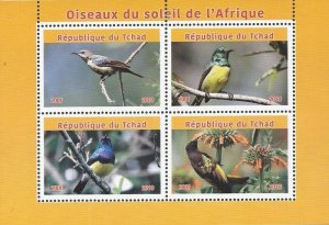 Chad - 2019 Sunbirds of Africa - 4 Stamp Sheet - 3B-734