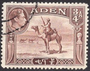 ADEN SCOTT 17