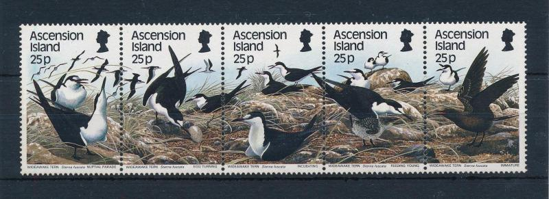 [52356] Ascension 1988 Birds Vögel Oiseaux Ucelli  MNH