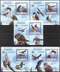 {099} Comoros 2009 Birds Falcons 5 S/S Deluxe MNH**