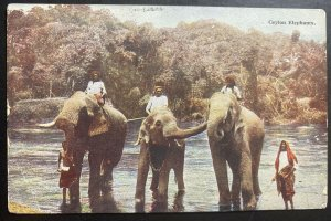 1926 Colombo Ceylon Picture postcard Cover To Asnieres France Elephants