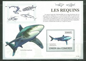 Comoro Islands MNH S/S B480 Requins Sharks 2009
