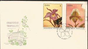 V) 1972 CARIBBEAN, TROPICAL ORCHIDS, BRASSA CATTLEYA SINDAROSSIANA, CYPRIPEDIUM