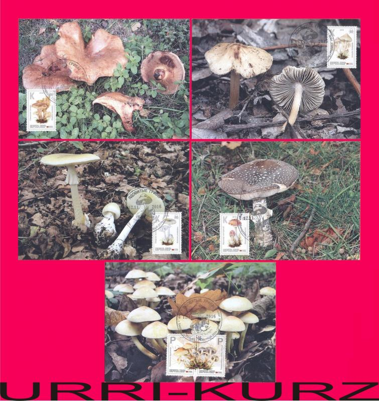 TRANSNISTRIA 2016 Nature Flora Poisonous Mushrooms Fungi 5 MaxiCard Maximum Card