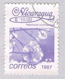 Nicaragua Flower purple 10 - pickastamp (AP108724)