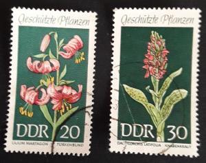 Flowers, Europe, Germany, DDR, №10-Таня