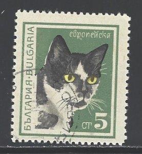 Bulgaria Sc # 1591 used (RRS)