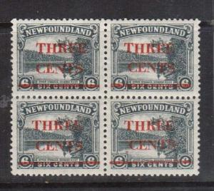 Newfoundland #160 #160iii VF/NH Block