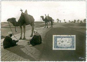 38753  - Algeria - POSTAL HISTORY -  MAXIMUM CARD  1938 : CAMELS & PALM TREES