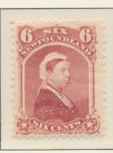 Newfoundland (Canada) Stamp Scott #35, Mint Lightly Hinged - Free U.S. Shippi...