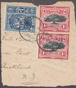 TONGA 1903 1d(2) & ½d on piece - Nukualofa cds..............................A197