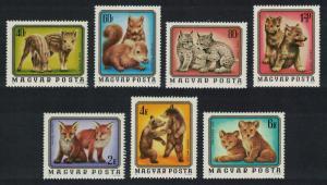 Hungary Boar Squirrel Lynx Wolf Fox Bear Lion Cubs Young Animals 7v 1976 MNH