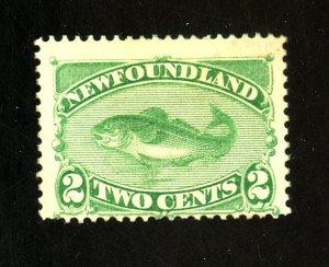 Newfoundland #46 MINT F-VF No Gum HR Cat $ 45.00