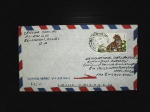 Belize A/M cover Belmopan to USA panther (34bde)