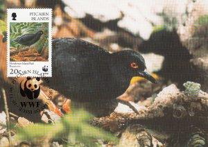Pitcairn Islands 1996 Maxicard Sc #459 20c Henderson Island rail WWF