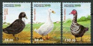 Kyrgyzstan Birds on Stamps 2019 MNH Poultry Ducks 3v Set