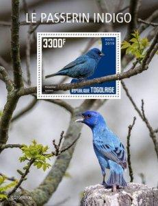TOGO - 2019 - Birds : Indigo Bird - Perf Souv Sheet - M N H